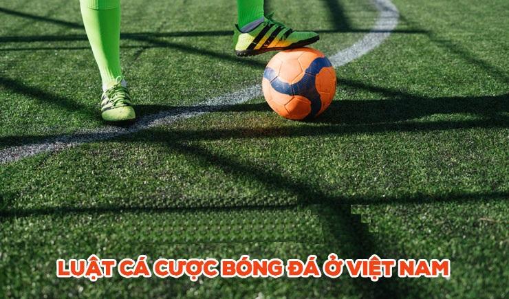 luật chơi cá độ bóng đá ở Việt Nam dành cho người mới